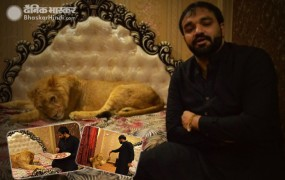 इस पाकिस्तानी शख्स ने घर में पाल रखा है बब्बर शेर