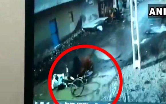 देखें वीडियो: गुजरात में आवारा सांड ने किया राहगीरों पर हमला