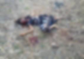 चाकू से दनादन वार कर उतार दिया मौत के घाट, खेत में मिली खून से सनी लाश