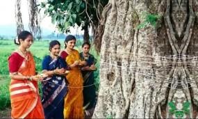 गुरु पुष्य योग में मनाई गई हरियाली अमावस्या