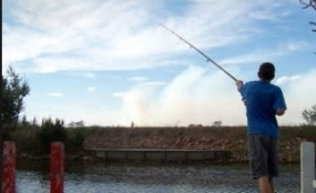 मछलीपकड़ने रोका तो वन अधिकारियों पर कर दिया हमला