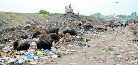 नागपुर में प्लास्टिक बंदी बेअसर , रोज निकलता है 100 टन प्लास्टिक