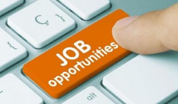 8वीं पास के लिए नौकरी का सुनहरा मौका, सीधी होगी भर्ती
