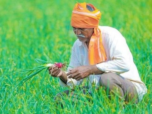 फसल बीमा योजना का किसान 24 तक ले सकेंगे लाभ, बढ़ी अवधि