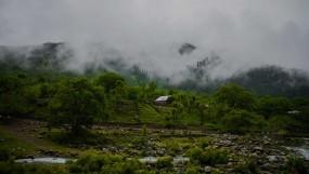 जम्मू-कश्मीर: शादी नहीं करना चाहती थी बेटी, पिता ने हत्या कर जंगल में फेंकी लाश