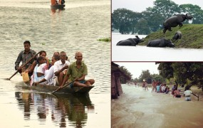 बिहार-असम में बाढ़ का कहर, अब तक 44 लोगों की मौत, लाखों प्रभावित
