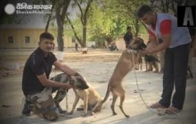MP: कमलनाथ सरकार ने किए कुत्तों के भी तबादले, BJP बोली- हाय रे बेदर्दी