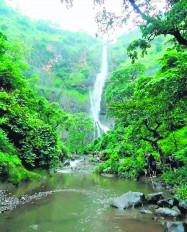 धारणी की पहाड़ियों में मिले सात नए झरने, टूरिस्टों का उत्साह दुगना