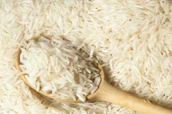 बालाघाट का चिन्नौर चावल शीघ्र ही दस्तक देगा दुनिया के बाजार में, 5 हजार किसान करेंगे जैविक खेती