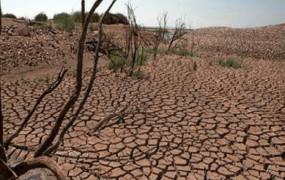 सूखे की मार झेल रहे क्षेत्रों में बढ़ रहा डेंटल फ्लोरोसिस, आठ जिलों में बुरे हैं हाल