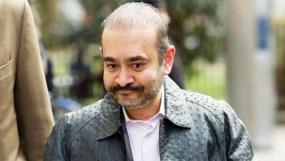 नीरव मोदी की पेंटिंग, घडी और कार बेचने ईडी ने अदालत से मांगी अनुमति