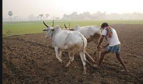 संकट में अन्नदाता , विषबाधा के सैकड़ों शिकार, सरकार के दावों की खुल रही पाेल