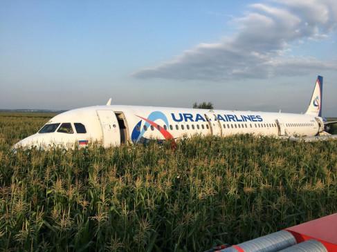 रूस: पायलट की सूझबूझ से बची 233 लोगों की जान, फ्लाइट की मक्के के खेत में लैंडिंग