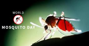 वर्ल्ड मॉस्किटो डे 2019: जानिए मलेरिया, चिकनगुनिया और डेंगू के लक्षण