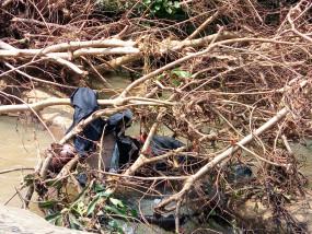 नदी में बहे महिला व पुरूष का शव मिला - पुल पार करते समय हुआ था हादसा
