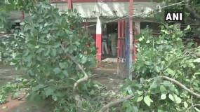 भारी बारिश के कारण पटना पुलिस लाइन में गिरा पेड़, 10 पुलिसकर्मी घायल