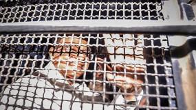 चिदंबरम को अब 3 अक्टूबर तक रहना होगा तिहाड़ जेल में, कोर्ट ने बढ़ाई कस्टडी