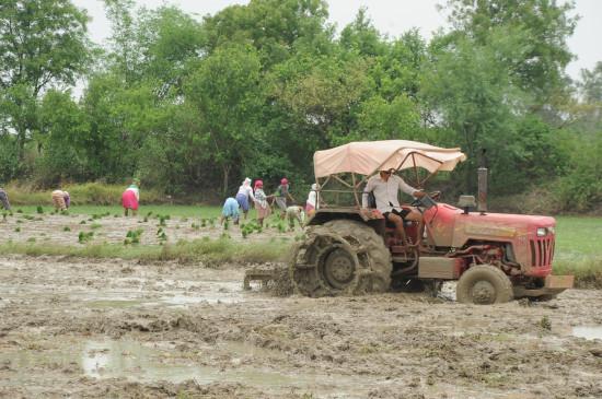 पंजाब के किसान फसल अवशेष प्रबंधन सम्मेलन में भाग लेंगे