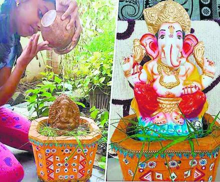 इनके घरों में पौधों के रूप में हैं बाप्पा, बीज गणेश का पिछले वर्ष घर पर ही किया था विसर्जन