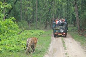 पर्यटकों के लिए 16 अक्टूबर से खुलेगा कान्हा राष्ट्रीय उद्यान