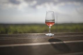 देहरादून शराब कांड में कोतवाल, चौकी इंचार्ज निलंबित