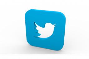 पाकिस्तानियों की नई परेशानी, भारत ने ट्विटर को अगवा कर लिया !