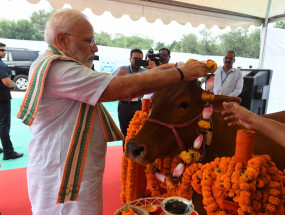 मोदी की गाय वाली टिप्पणी पर कांग्रेस का पलटवार, कहा- विश्वविद्यालयों की चिंता करिए