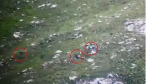 पाकिस्तानी घुसपैठ नाकाम, वीडियो में देखें कैसे आर्मी ने आतंकियों को खदेड़ा..