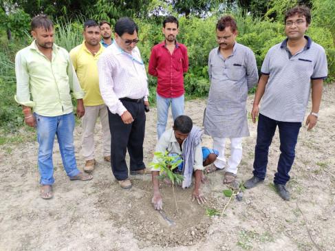 बिहार में नई तकनीक से ज्यादा फलेगी रसीली लीची