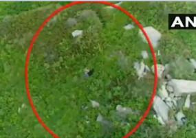 पाकिस्तानी घुसपैठ का वीडियो आया सामने, इंडियन आर्मी ने कर दी थी कोशिश नाकाम