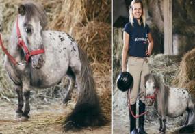 Video: ये है विश्व का सबसे छोटा और आकर्षक घोड़ा