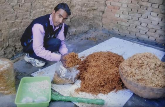आधुनिक खेती से आत्मनिर्भर हुआ युवक -45 दिन में ले रहा तीन बार मशरूम का उत्पादन