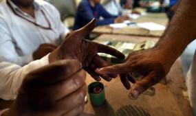मतदान में फिर पिछड़े शहरी मतदाता, ठाणे में ईवीएम पर फेंकी स्याही और जानिए कहां पेश आईं दिक्कतें