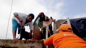 बिहार : बाढ़ में 12 दिनों से फंसे दंपति को सुरक्षित निकाला गया