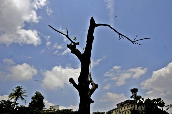 बिहार में हल्के बादल छाए