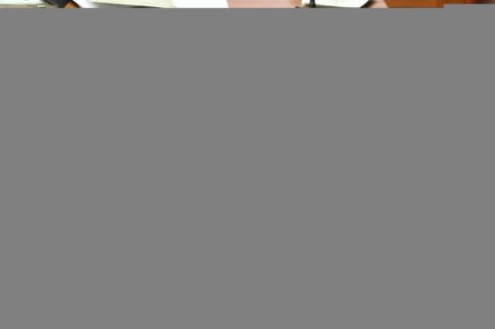 कांग्रेस नेता डी.के. शिवकुमार को जमानत