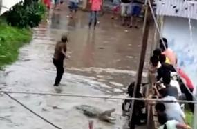 Fake News : भारी बारिश के चलते पटना सड़कों पर देखा गया मगरमच्छ ?