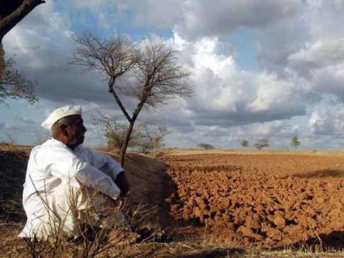 चंद्रपुर में किसान ने की खुदकुशी, RTI से खुलासा- 6 साल में 15000 ने की आत्महत्या
