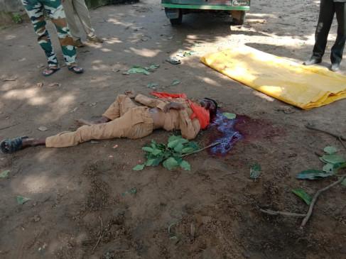 हाथी ने अपने महावत को कुचला : मौत , मजदूर को घायल किया - बांधवगढ़ टाईगर रिजर्व की घटना