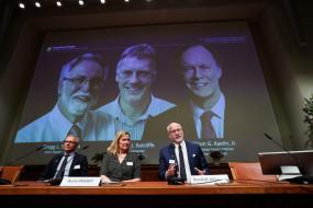 तीन अमेरिकी वैज्ञानिकों को चिकित्सा का नोबेल