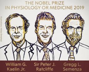 तीन वैज्ञानिकों को मिला चिकित्सा का नोबेल, खोज से मिलेगी एनीमिया-कैंसर के इलाज में मदद