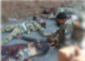 Fake News: पाकिस्तान सैनिकों ने मार गिराए भारतीय जवान, जानें क्या है सच
