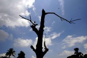 मप्र में आंशिक बादलों का डेरा