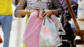 छापा : पांच किलो प्लास्टिक पन्नी, डेयरी से मिलेे 1.80 लाख के पटाखे जब्त