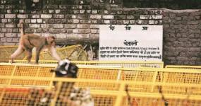 SC ने स्वीकारा केंद्र का प्रस्ताव, दिल्ली में उसी जगह बनेगा संत रविदास का मंदिर