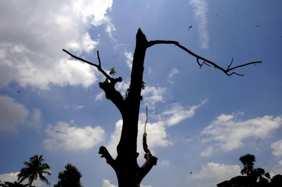 मप्र में आंशिक बदली छाई, गर्मी का असर कम