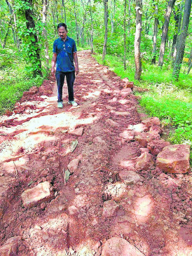 वॉकिंग ट्रैक लड़खड़ा रहे कदम, वन विभाग ने बिछा दिए बड़े-बड़े पत्थर, लोग हो रहे चोटिल