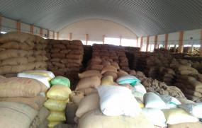 किसानों को नहीं मिल रहा सोयाबीन का उचित दाम, मंडी में हो रही लूट