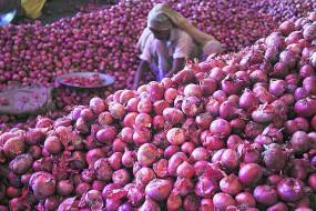 सरकार करेगी 1.2 लाख टन प्याज का आयात, कैबिनेट की मंजूरी
