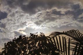 मप्र में बादल छाए